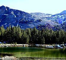 """""""Sierra Lake"""" by Lynn Bawden"""