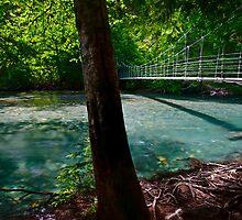 Ohanapecosh Bridge - Mt. Rainier N. P. by Mark Heller