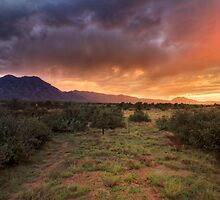 Monsoon Mountain by Bob Larson