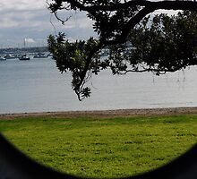Through the lens by chrissy mitchell