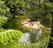 kayaks for Abel - Tasman by Angeloid