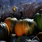 Greenhouse Pumpkins 2 by Wayne King