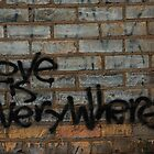 Love Is Everywhere by Nate Welk