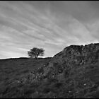 Long Mynd by Maxmel