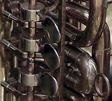 Trumpet, horn really! by patjila