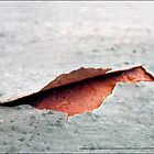 THE CRACK by EstherLPolonio
