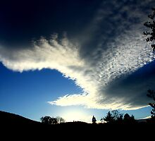 Cloud Wings by Larry Turner