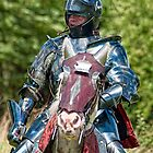 Knight In Shining Armor by cameraimagery