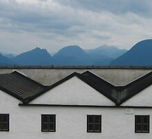 Nature vs. Nurture in Salzburg by ksesh