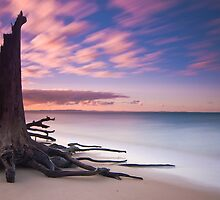 Barbie (Bribie) Island by kushchadda
