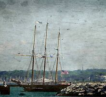 Pirates Ship © by Dawn M. Becker