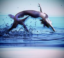Making A Splash by michellerena