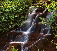 WOODFIN CASCADE by Chuck Wickham