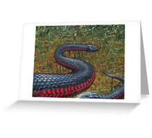 Red Bellied Black Snake Greeting Card