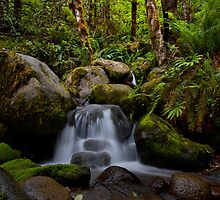 Boulder Creek Dream by Charles & Patricia   Harkins ~ Picture Oregon