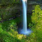 Silver Falls, Oregon by franceshelen