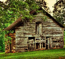 Another Old Barn in Georgia by Chelei