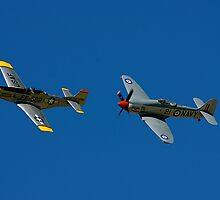 Mustang and Sea Fury by Klaus Girk