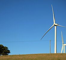 Wind turbines by Janette Anderson