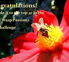Bee and Wasp Passions Top 10 Banner by su2anne