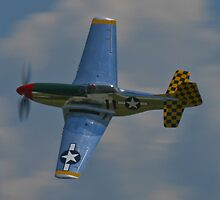 P-51 Mustang canopy pass by Henry Plumley