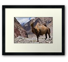 Gateway to the Karakoram Highway Framed Print