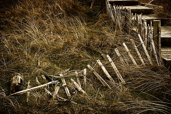 Steps on Silloth Dunes by Mike Finley