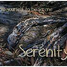 Serenity by WeblightStudio