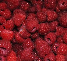 Red Raspberries by Jonice