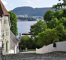 Street in Old Bergen. by Annbjørg  Næss