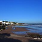 Dawlish by the Sea by Charmiene Maxwell-batten