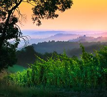 San Gimignano Hills #1 by Inge Johnsson