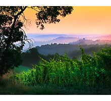 San Gimignano Hills #1 Photographic Print