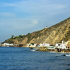 Malibu Beach  by basalt101