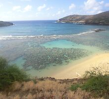 Hanauma Bay by Anna Chudko