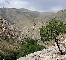 Sentab Valley by Gillian Anderson LAPS, AFIAP