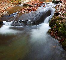 autumn waterfall by plamenx