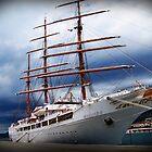 Ship on a stormy sea by Sunil Bhardwaj