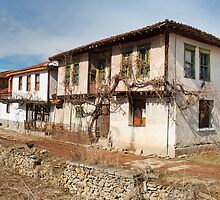 historic house by plamenx