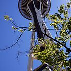 The Space Needle by CherylBee