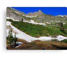 High altitude environs Canvas Print
