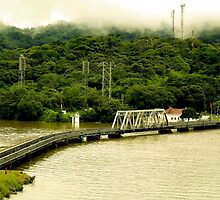 Train Tracks along the Panama Canal by Stephen  Saysell