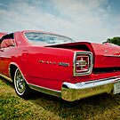 Ford Galaxie 500 by Yvonne Roberts