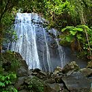 Yunque Waterfall by John Cruz
