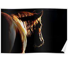 Golden darkness Poster