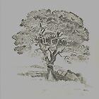 Big Tree in the Field by WienArtist