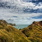 Dorset Coastline by NeilAlderney