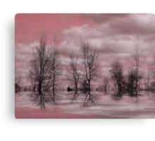 Summer Pink ! Canvas Print