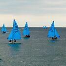 Enterprise fleet by SWEEPER