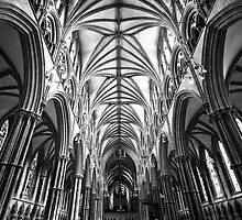 Lincoln Cathedral by Stephen Knowles